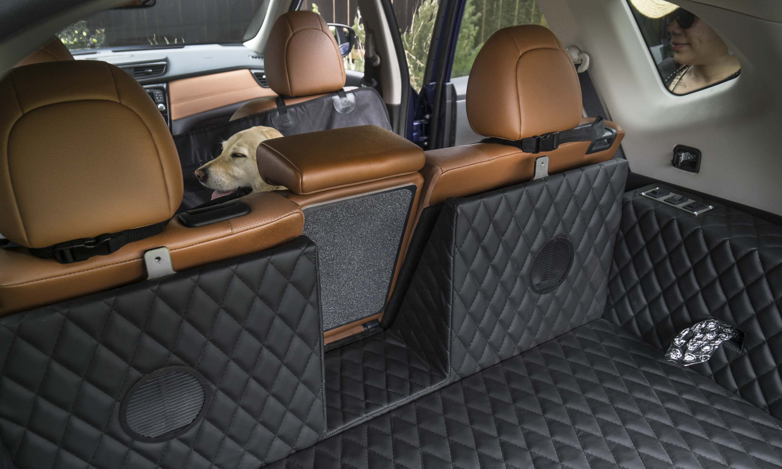 2017 new york auto show nissan rogue dogue autonxt. Black Bedroom Furniture Sets. Home Design Ideas